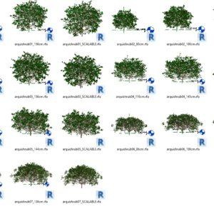 Plantes 3D familles REVIT
